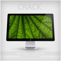 CRACK by 99xpress