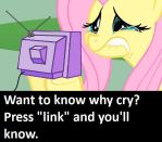 Fluttershy Crying by N60