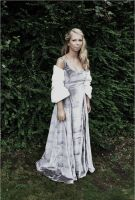 Winter Gown 1 by Will-Hunt2009