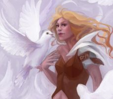 Doves by Stolidly