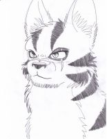 WIP.:Tigerstar:. by kibaandme