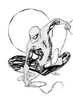 Spider-Man - Paris Manga SciFi Show feb2014 by SpiderGuile