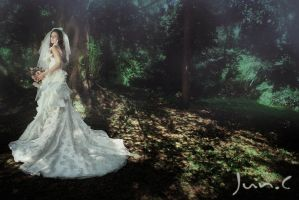 wedding dress by yychanson