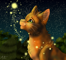 Firestar - Shining Bright by Lyss504813