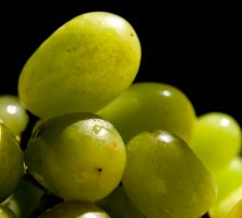 Wet Grapes 2 by alimuse