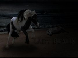 Lady Black Made By BawlPointe by LetsMakeLoveNotWar