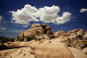 Cumulus - Joshua Tree by JoeBostonPhotography