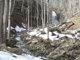 Buttermilk Falls early spring by PeteZa88