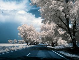infrared 13 by Weblen