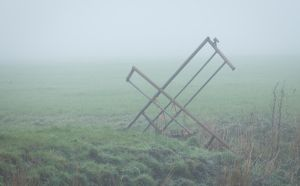 Cross Gate in the Fog by Danimatie