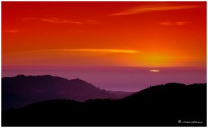 Carmel Valley 2338 by hfpierson