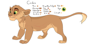 Castus Character Sheet by Howikin