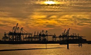 Silhouette Port cranes Hamburg by Bull04