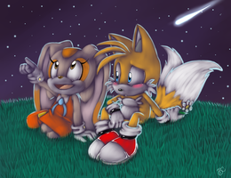 Staring at the stars :Cream n Tails: by Blue-Chica