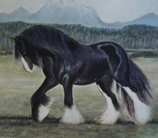 Shire Horse by PASTELIZATOR