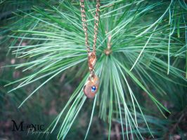 Day Sixty-Five - Wear Your Heart On A Chain by mandeax