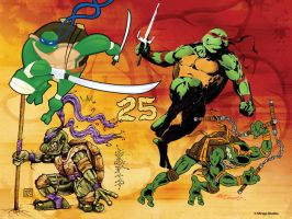 TMNT 2009 by WarBrown