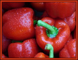 Red Peppers by kanes