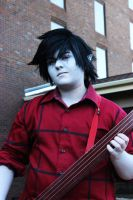 .AT. Marshall Lee 006 - ASTL 2014 by MasonManiac