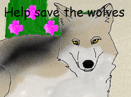 help save the wolves by biggywoot