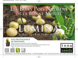 Encart publicitaire Inno Seeds by JFDC