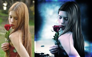 Before 'N' After (Tears of a Rose) by MzDemented