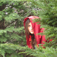 Little Red Riding Hood by grg-costuming