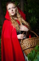Little Red Riding Hood by mchechenev