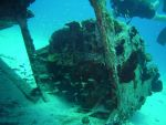 Fish at a Cessna Wreck by GameraBaenre