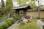 Japanese Garden 8: Compound by AndySerrano