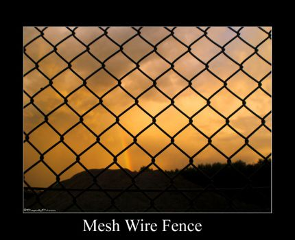 Mesh wire Fence by DragonflyPrincess