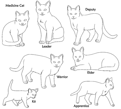 Warrior Cat Bases Paint Format by SpiritOfTheTree