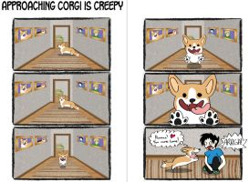 Corgi Logic - Approaching Corgi Is Creepy by xHenri