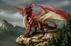 Red Dragon. DnD by MadameNightshade