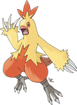 Combusken by Xous54