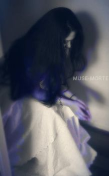 In the silence by Muse-Morte