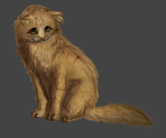 Cat by Speck--Of--Dust