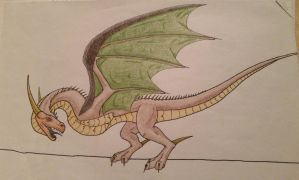 Old dragon drawing by awesomestickfigure