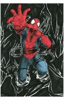 Spider-man by CrazyBluePsychopath