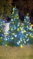 Blue and Yellow Christmas Trees by mariosonicfan16
