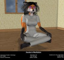 Aseska in Meditation by Desgar