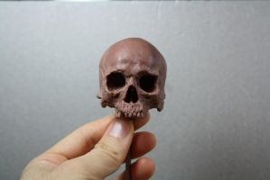 Skull sketch with monster clay by giolord11