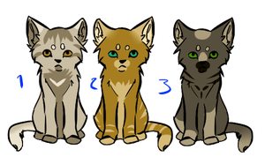 warriorcat kit adopts CLOSED by Z-A-D-Y