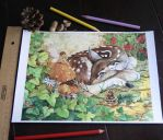 Resting Fawn_ Fine art Prints by JoannaBromley