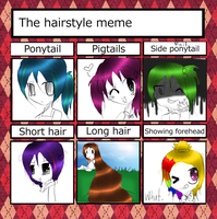 The hairstyle meme by ice---tea