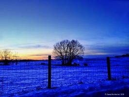 Night Falls On The Pasture by jim88bro