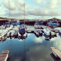 Harbour by divafica
