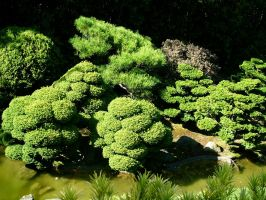Japanese Tea Gardens 17 by Robriel-Stock