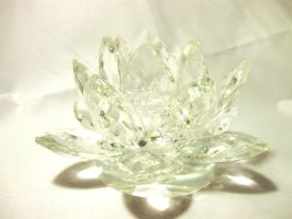 Crystal Lotus Flower CelticStrm-Stock (6) by CelticStrm-Stock