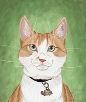 Speedie of the Week 2 Sunny by Falcolf